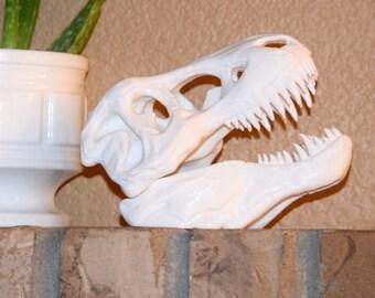 White Tyrannosaurus Rex Skull 3D