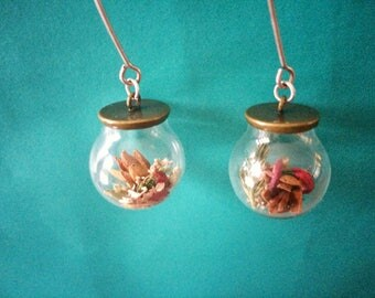 Cedar Cones and Dried Flowers in Glass on Sterling Silver Handcrafted Earwires
