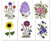 Pressed Flower Cards - 6 Assorted Pressed Flower Notecards - #070