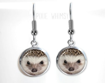 HEDGEHOG Earrings, Hedgehog Dangle Drop Earrings Woodland Animal Glass Dome Photo Art Nature Jewelry Gift for Hedgehog Lover Owner Hedge Hog