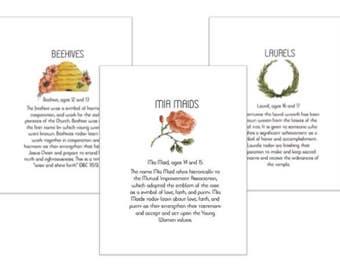 Young Women Class Purposes Printout