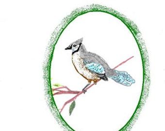 Birds of Virginia Note Cards,set 2