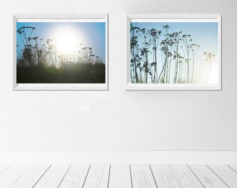 set of two photos, abstract photography, office decor, nature photos, botanical photos, landscape photos, grass photos, fine art photography