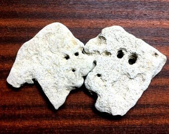 2 PCS Natural Holey Sea Rock Beach Stone Israel Holy land Unusual  Shape Decor Collection Craft