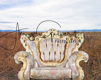 Background - Overlay - Rococo vintage antique, very ordinate chair
