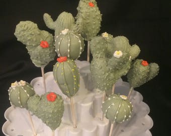 12 Desert Cactus cake pops, Garden Party, Flowering cactus