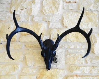 Blue Deer Skull Antlers Wall Mount