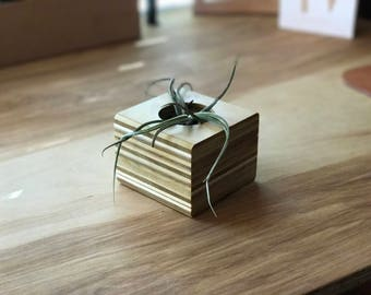 Handmade Plywood Planter - Small