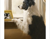 "Border Collie Dog Portrait - ""Waiting for a friend"" - by award winning artist JOHN SILVER. Personally signed A4 or A3 size Print. BC324SP"