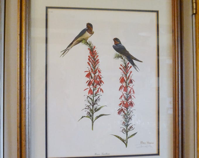 Vintage Ray Harm Signed Print Barn Swallow Framed with Glass All Documents PanchosPorch