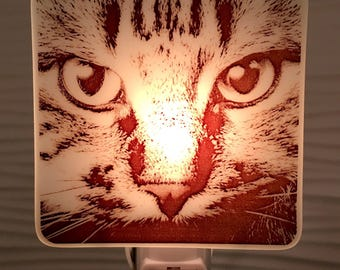 Kitty Face Night Light Fused Glass