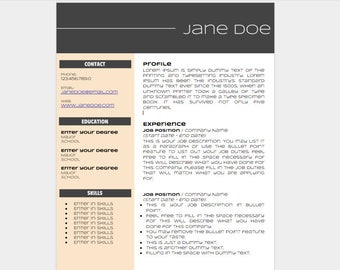 stylish google doc resume template google doc resume google doc template resume template