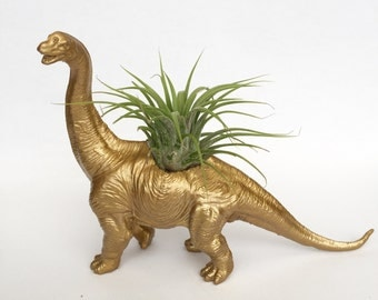 Gold Diplodocus Dinosaur Planter with Air plant