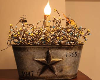 Galvanized Star Planter Candelabra Light with Pip berries, Bee and Butterfly