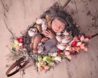 Mohair Bunny bonnet. Bunny Hat, Easter, Rabbit, Easter Mohair Hat,   Newborn Hat, Newborn Photo Prop.