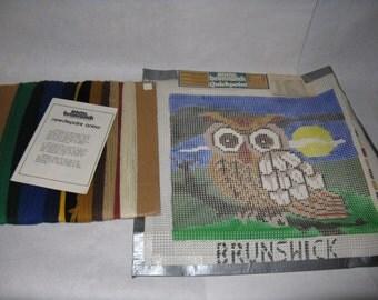 Vintage owl needlepoint kit complete Brunswick brand quickpoint