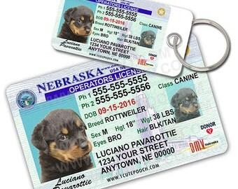 Nebraska Driver License Custom Pet ID Tags and Wallet Card - Dog ID Tag - Personalized Pet ID Tags