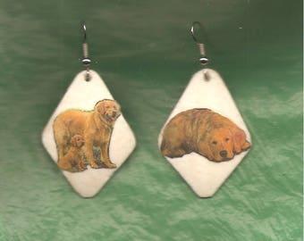 GOLDEN RETRIEVER - EARRINGS - Ostrich Shell - Hand Crafted