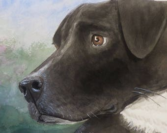 Animal portraits, by commission, send a photo!