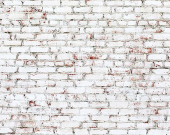 Vinyl Backdrop White Brick Wall Painted Photography V0908