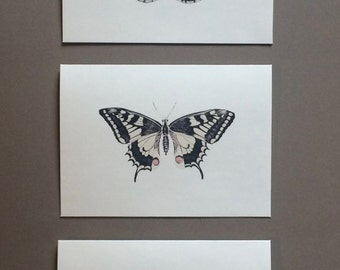 Set of 6 or 12 Handmade Blank Butterfly Print Note Cards #1