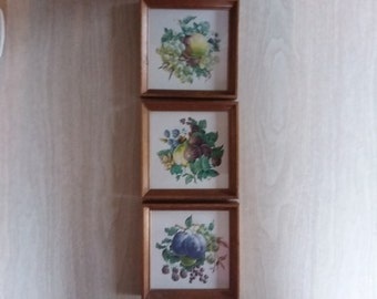 Vintage Fruit Pictures Framed in Wood -- Petite Squares