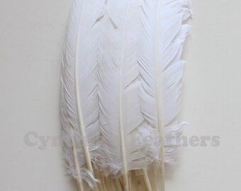 Turkey Feathers, Turkey Round Quill Feathers 12-14 inches 20 pcs SKU: 6A12