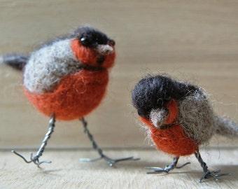 Curious needle-felted birds; felted robins; felt sculpture