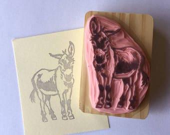 Ref.109. Dwarf donkey / Ane nain