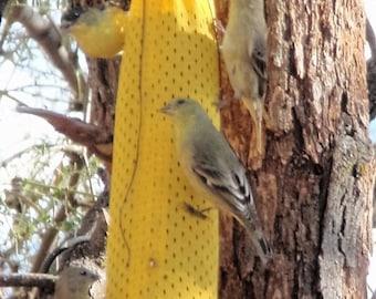 Finch/Bird Feeder