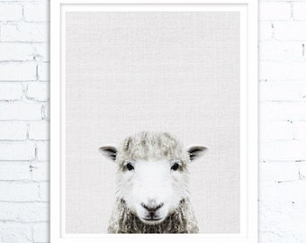Sheep print, Farm animal print, Farmhouse decor, Farm animal wall art, Sheep art, Sheep wall art, Sheep print,Animal room decor