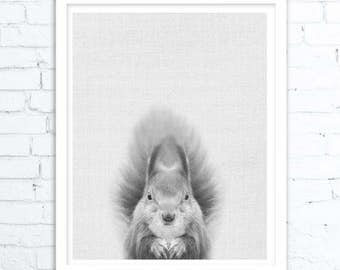 Wall Art Animals, Squirrel Print, Woodlands Nursery Wall Art, Forest Animal, Printable Decor, Baby Shower Gift, Squirrel Art