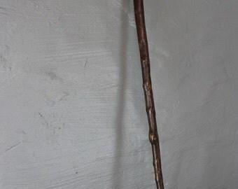 Vintage Walking Stick