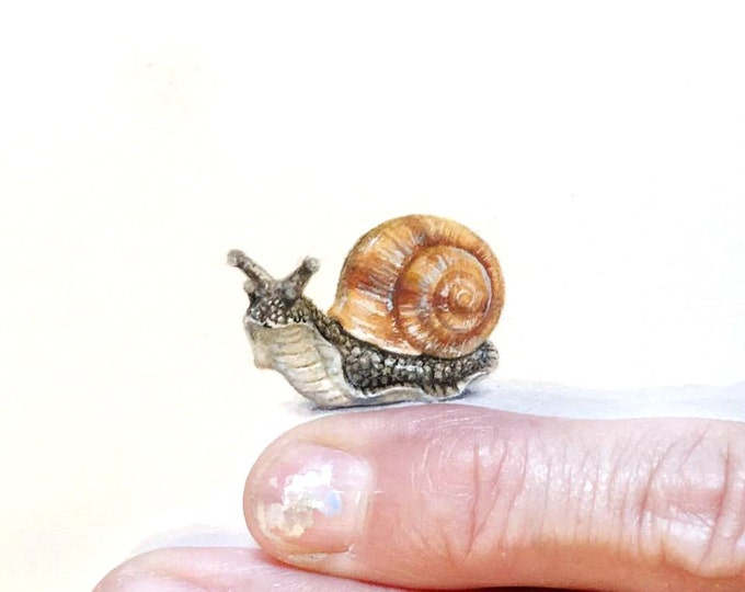 """Print of miniature painting of Snail. 1 1/4"""" x 1 1/4"""" print of original Snail painting on 5"""" square german etching paper"""