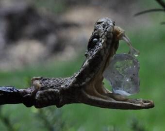 TREE-ROOT WAND - Dumortierite-quartz & Rattlesnake.