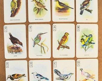 12 Vintage illustrated bird swap cards