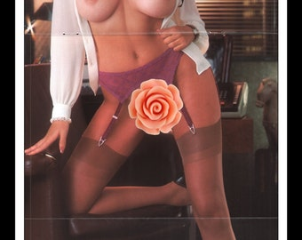 "Mature Playboy June 1981 : Playmate Centerfold Cathy Larmouth Gatefold 3 Page Spread Photo Wall Art Decor 11"" x 23"""