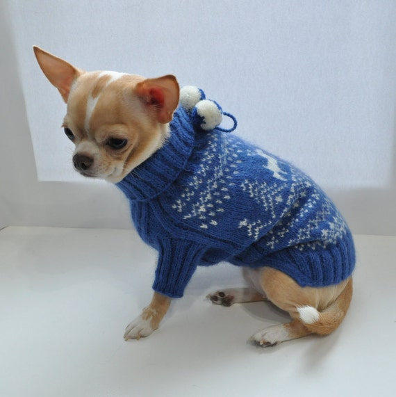 blue dog sweater chihuahua sweater dog clothing chihuahua coat. Black Bedroom Furniture Sets. Home Design Ideas