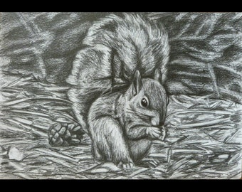 Hand-drawn Squirrel Print