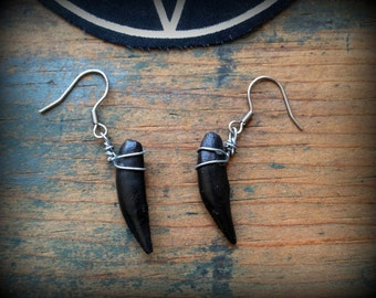 Black coyote teeth earrings//Ethical taxidermy//Bone jewelry//Curiosities and oddities//Witchy//Occult