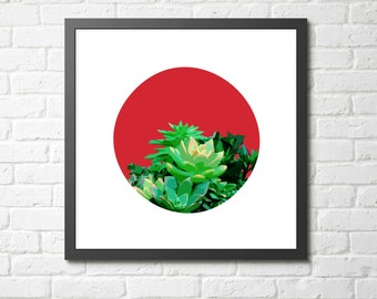 "Modern Wall Art, Mid Century, Abstract Print, Succulent Art, Wall Decor, Pink Art, Colorful Art, Plant Art, Tropical Art, ""Peak of Green"""