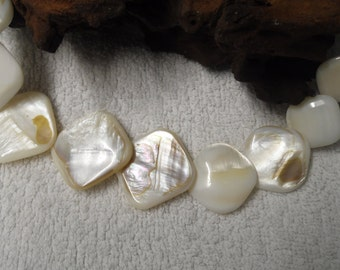 Shell Cream Necklace with Shell Toggle