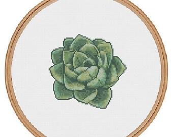Succulent Cross Stitch Pattern - instant digital pdf download - tropical modern plant air plant