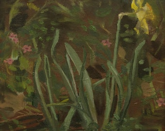 Volunteer Daffodil