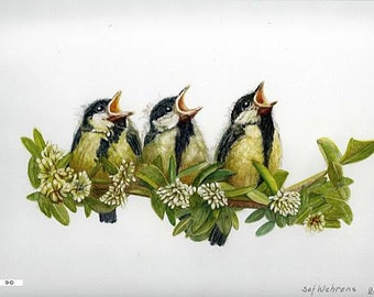 Fine art painting, watercolor, birds, Young cabbage titmouses