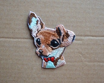 Lovely big eyes brown dog patch