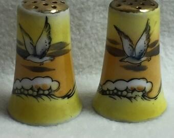 Salt and Pepper - Doves Flying Overhead (#012)
