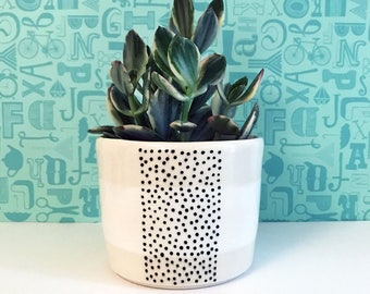 Dotted Stripe Planter-medium