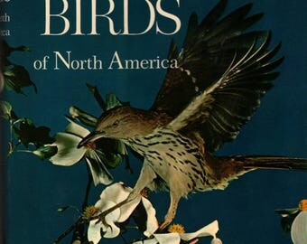 Song and Garden Birds of North America - Alexander Wetmore - 1964 - Vintage Book