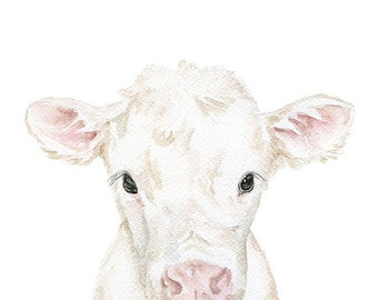 White Calf Watercolor Painting 4x6 Fine Art Giclee Reproduction - Nursery Art - Farm Animals - Baby Cow